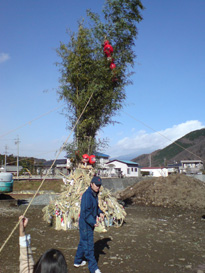 20070107-1.jpg